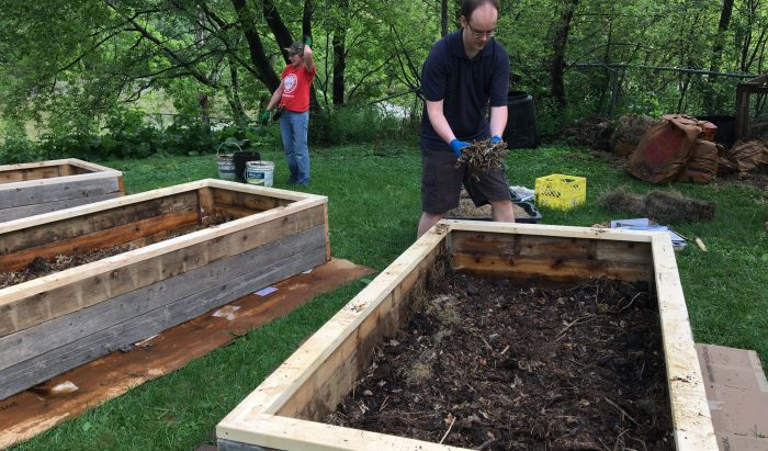 Adding a layer of dried leaves to garden boxes
