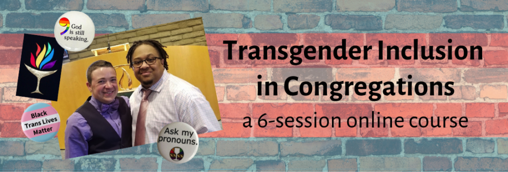 Trans Inclusion in Congregations